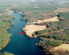 1999 Aerial Of Western Branch Preserve